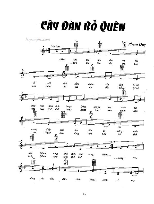 Cay Dan Bo Quen_001