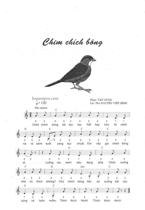 Chim chich bong_001